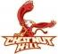 Chestnut Hill College vs Malloy 4.24.12
